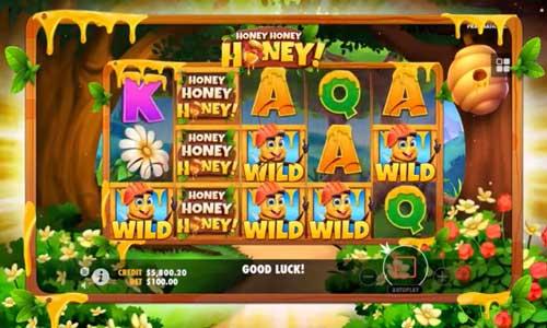 honey honey honey slot screen